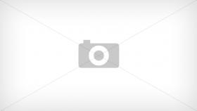 Болт распределительной плиты для гусеничный экскаватор HITACHI ZX250-3G (4179179)
